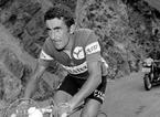 Franco Bitossi compie 80 anni, a Carmignano anche Cipollini e Martinello per fargli gli auguri