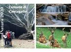 Estate nella natura: quattro percorsi  a piedi nel territorio della Riserva Acquerino Cantagallo