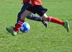 Rischio chiusura per le società sportive provinciali, l'appello al ministro dell'assessore Vannucci