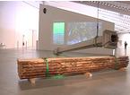 """Al Pecci si torna a parlare di ecosostenibilità con la mostra """"Cambio"""""""