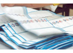Referendum ed elezioni regionali, il Comune apre il bando per presidenti di seggio e scrutatori