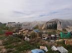 Abusi edilizi in aree sottoposte a vincoli paesaggistici, sequestrati 12 ettari