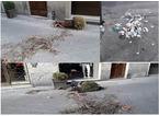 Atti vandalici in via Garibaldi, identificato il colpevole
